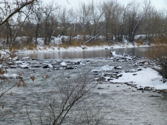 Boise River Winter