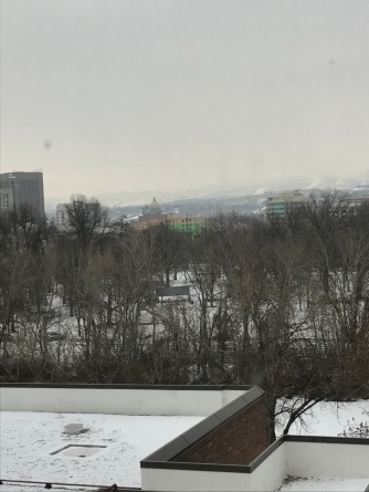 Downtown view from the Education building