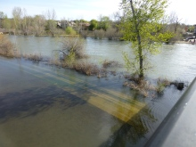 Flooding at Marianne Williams Park at Parkcenter